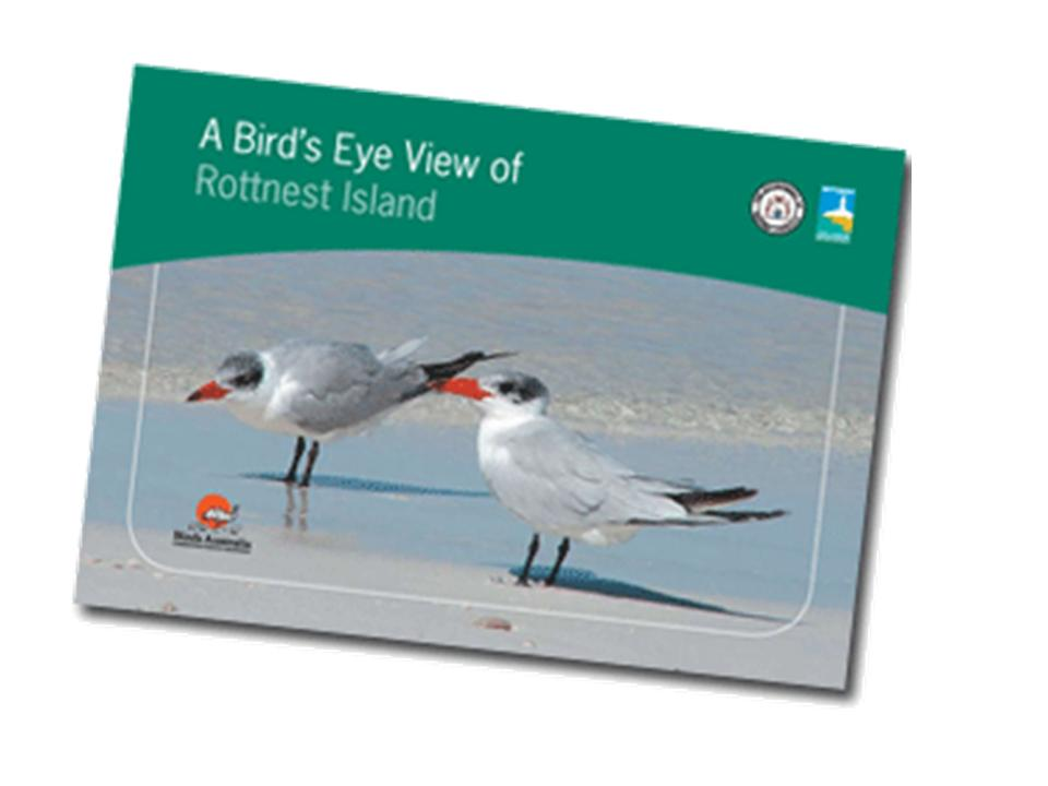Rottnest Island Birds publication